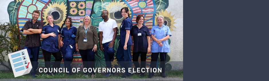 council governors election website carousel